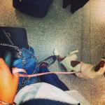 cecilia rodriguez aeroporto